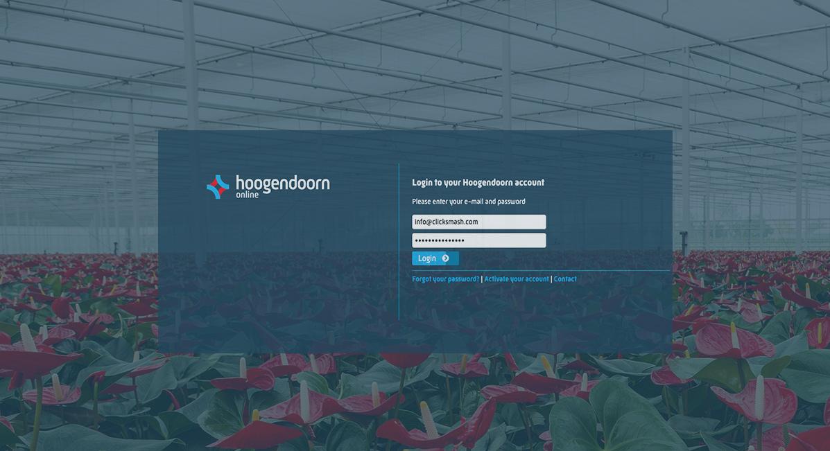 Hoogendoorn Online
